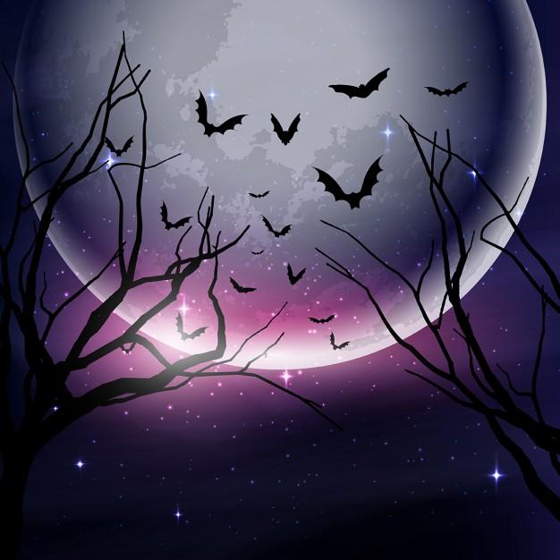 bosque-oscuro-con-una-luna-llena-para-halloween_1048-3267
