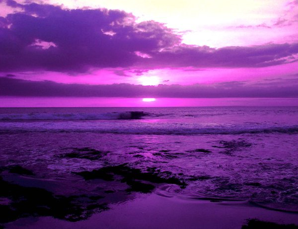 In_Purple_by_Andry122.jpg